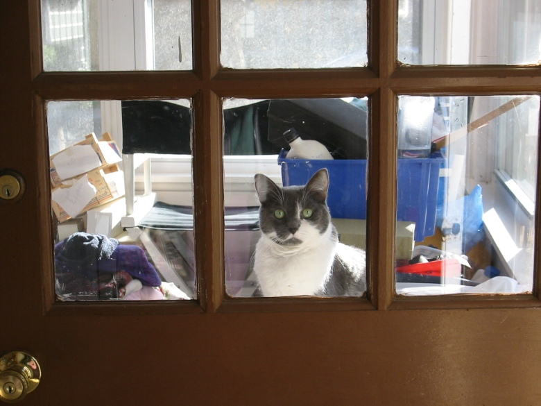 Artemis at the Door